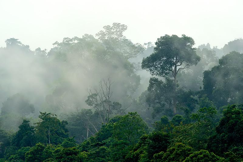 Image Result For Mount Kerinci Sumatraa