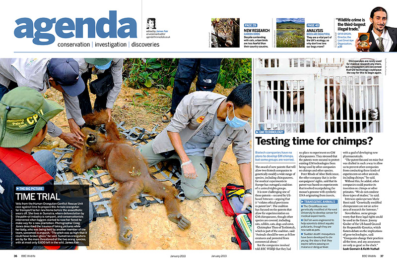 http://www.discoverwildlife.com/issue/january-2013