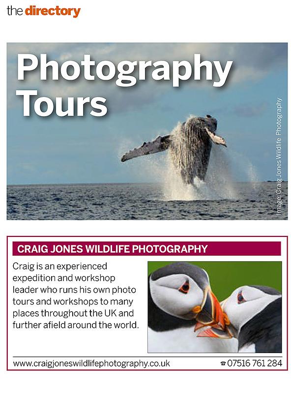 CraigJones_BBC Wildlife