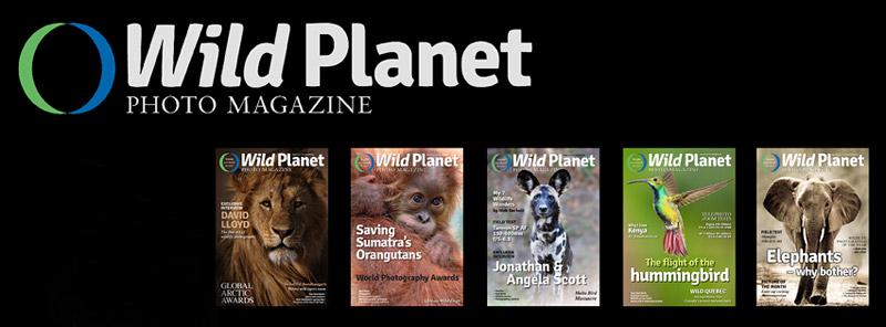 http://wildplanetphotomagazine.com/2014/lessons-in-fieldcraft/