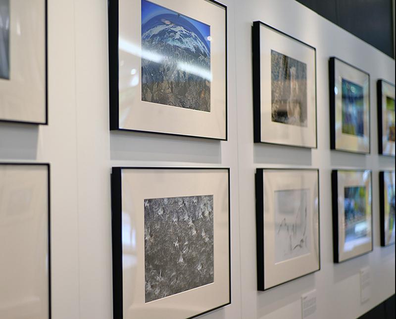 Craig Jones Wildlife Photography Eyes Of Nikon