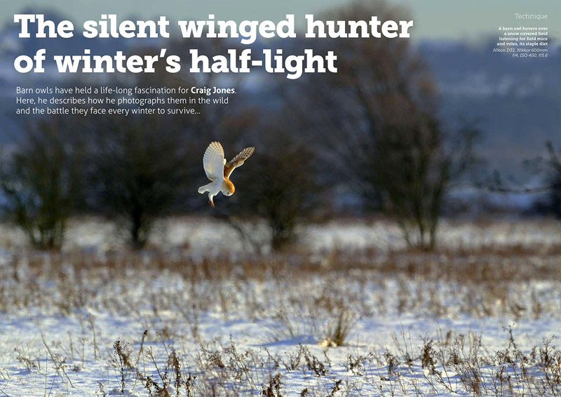 http://wildplanetphotomagazine.com/2015/the-silent-winged-hunter-of-winters-half-light/