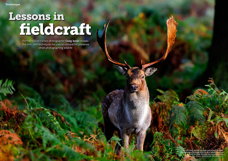 http://wildplanetphotomagazine.com/tag/craig-jones/