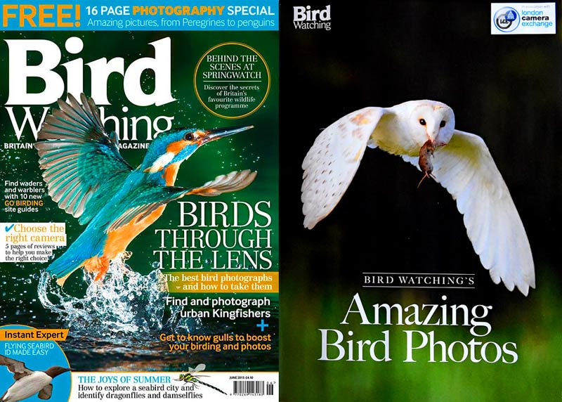 https://www.facebook.com/birdwatchingmag?pnref=story