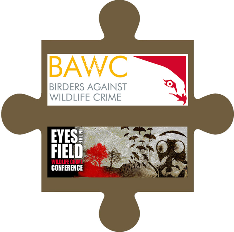 http://bawcconference.org/