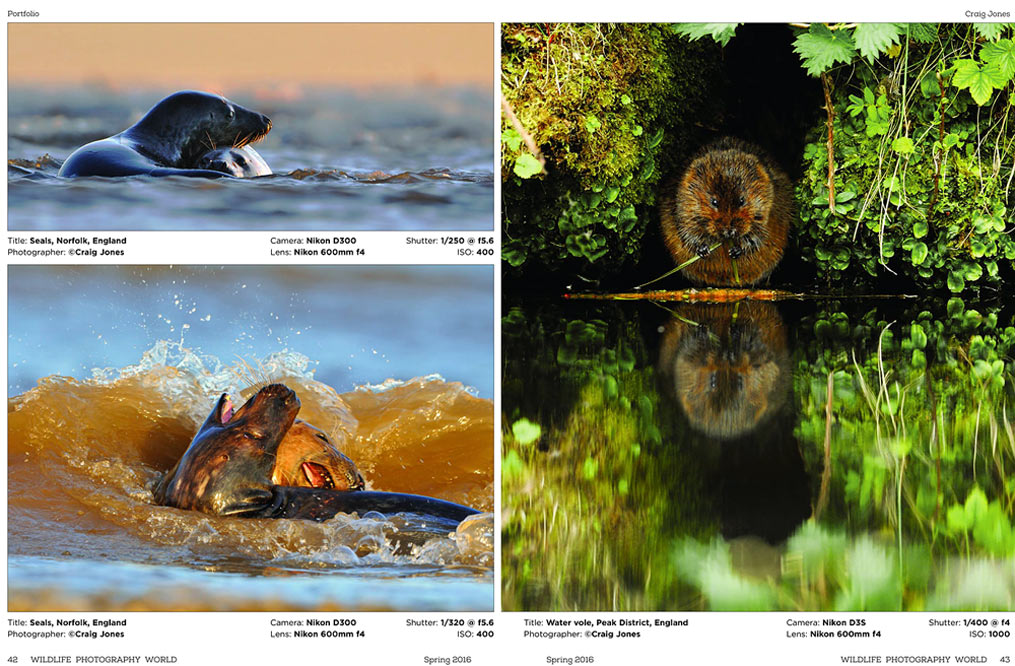 Craig Jones Wildlife Photography - Wildlife Photography World
