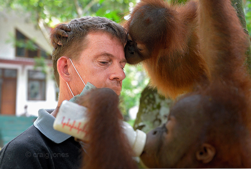 Craig Jones Wildlife Photography Sumatra