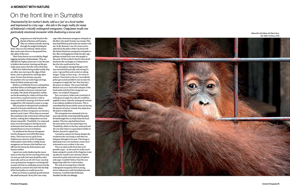 Craig Jones Wildlife Photography Sumatra Outdoor Photography